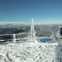 Feldberg black forest discovered with HiVino