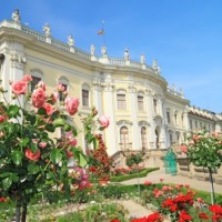 Ludwigsburg - discovered with HiVino