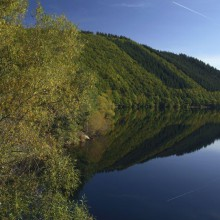 splendid Rur lake in Nationalpark Eifel Germany