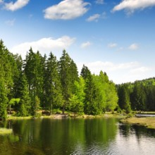 Amazing landscapes in Bavarian Forest Germany discovered with HiVino