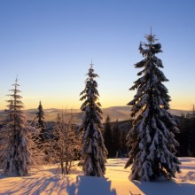 Beautiful winter landscape in Bavarian Forest - HiVino