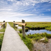 Beautiful Wadden Sea in Lower Saxony National Park with HiVino