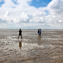 Mudflat hiking tours in Wadden Sea National Park of Lower Saxony Germany