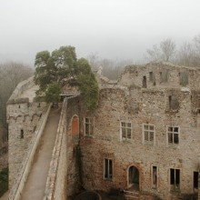 Castle Auerbach on a foggy day – HiVino