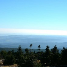 View over Harz National Park, discover Germany with HiVino