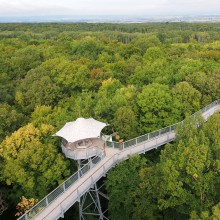Canopy walkway Hainich National Park in Thuringia – discover Germany with HiVino