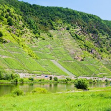 Moselle valley, Germany – discovered with HiVino