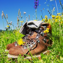 Hiking shoes - discover Germany on foot - HiVino