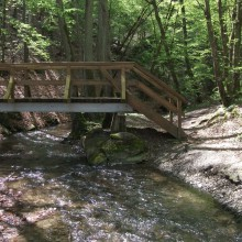 Bridge over the brook – discover the Ehrbachklamm with HiVino