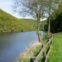 Hiking trail - Wilderness Trail Eifel