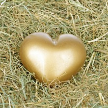 Heart in the hay – enjoy a romantic night at the Hay hotel Moerenhof with HiVino
