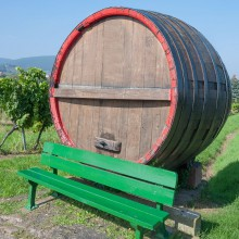 German Wine Route Edenkoben – discovered with HiVino