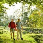 Westerwald-Steig - No.1 hiking trail